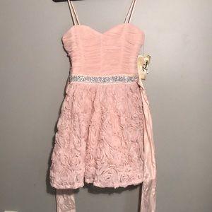 NWT Trixxi Blush Prom Dress